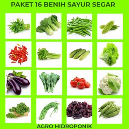 PAKET BENIH SAYUR logo