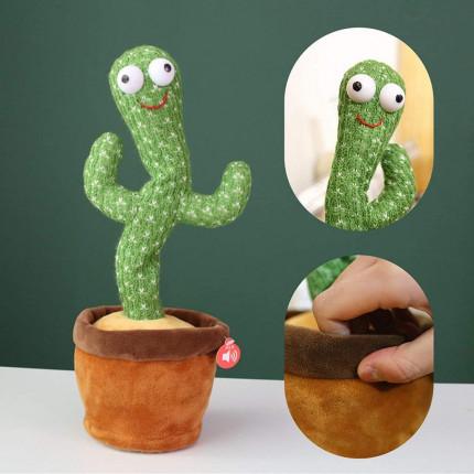 Cactus Funny [A52]