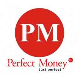 SALDO PERFECT MONEY logo